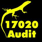 17020-Audit